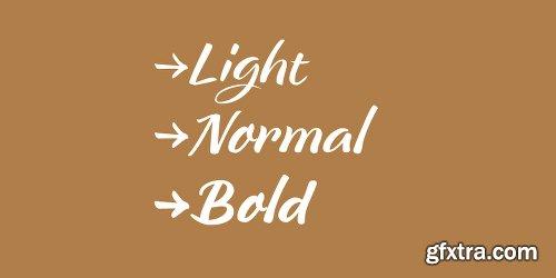 Breesh Font Family - 3 Fonts