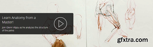 Drawing the Pelvis and Upper Leg With Glenn Vilppu (FHD Videos)