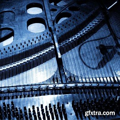 Detunized Rolfing Laid Back Vol 2 WAV KONTAKT SFZ SXT EXS FXP LiVE