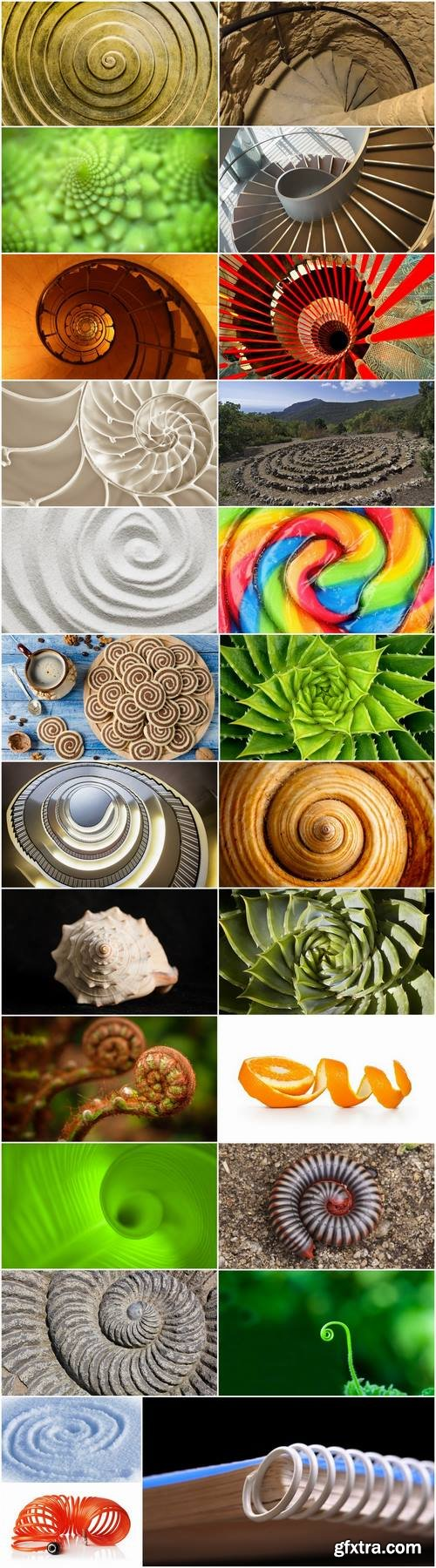 Conceptual illustration spiral staircase shell flower 25 HQ Jpeg