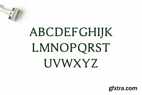 CM - Shaaron A New Serif 2 Font Family 1698174