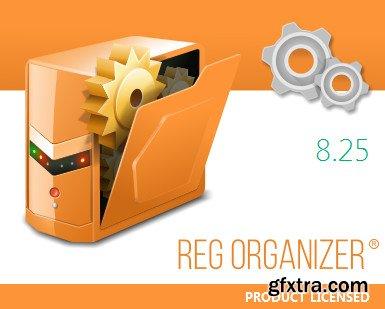 Reg Organizer 8.25 DC 30.01.2019