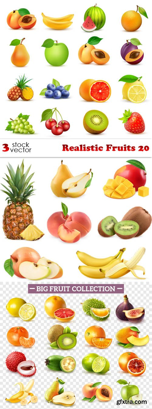 Vectors - Realistic Fruits 20