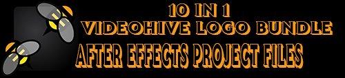 Videohive 10in1 Logo Bundle 2019