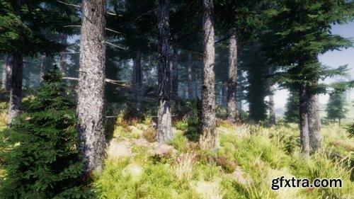 Mountain Trees - Dynamic Nature