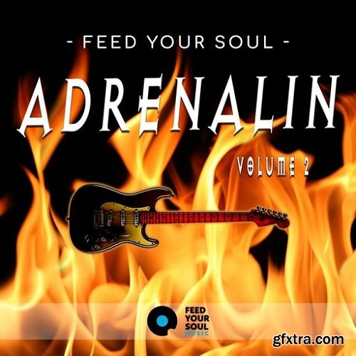 Feed Your Soul Music Feed Your Soul Adrenalin Volume 2 WAV