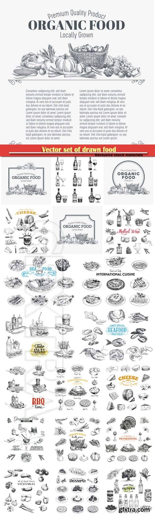 Vector set of drawn food