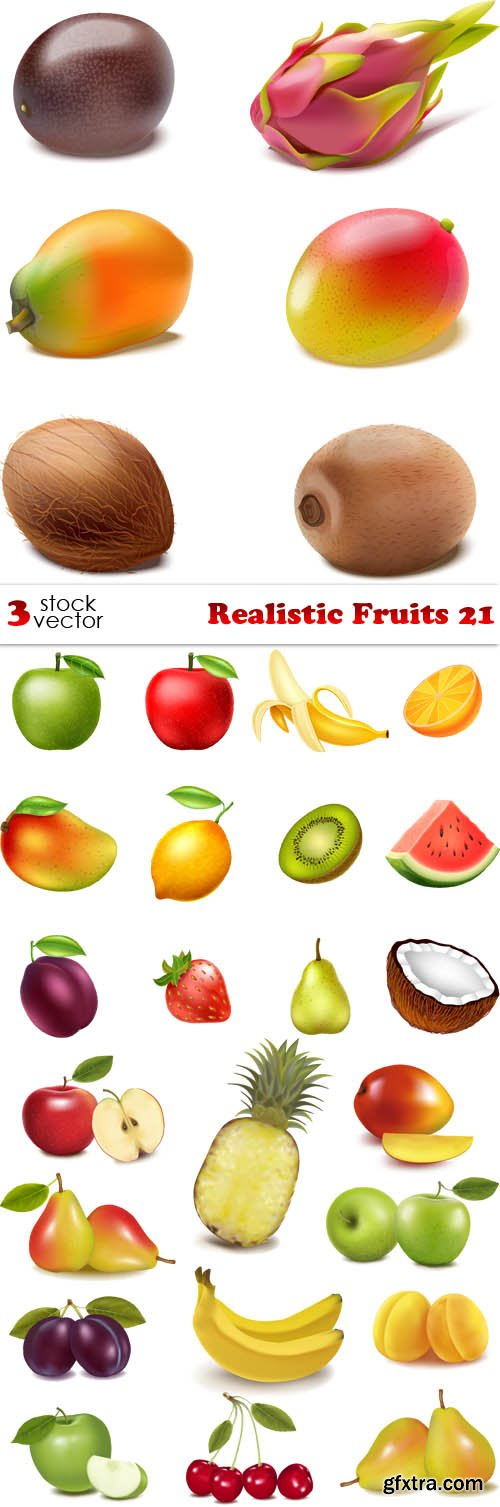 Vectors - Realistic Fruits 21