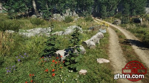Meadow Environment - Dynamic Nature