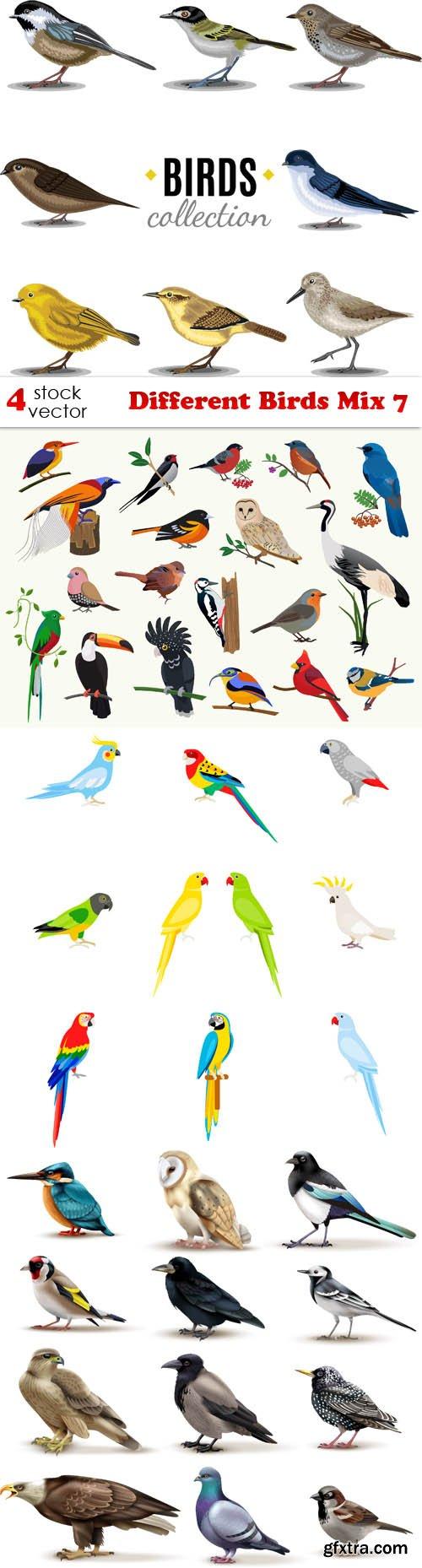 Vectors - Different Birds Mix 7