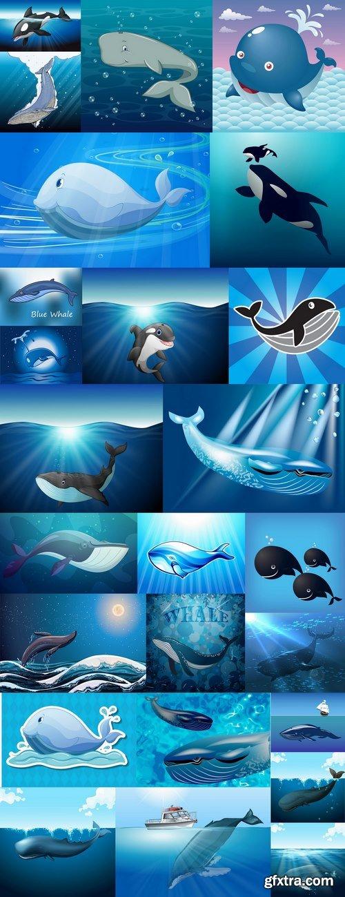 Orca whale illustration for children\'s books of the underwater world 25 EPS