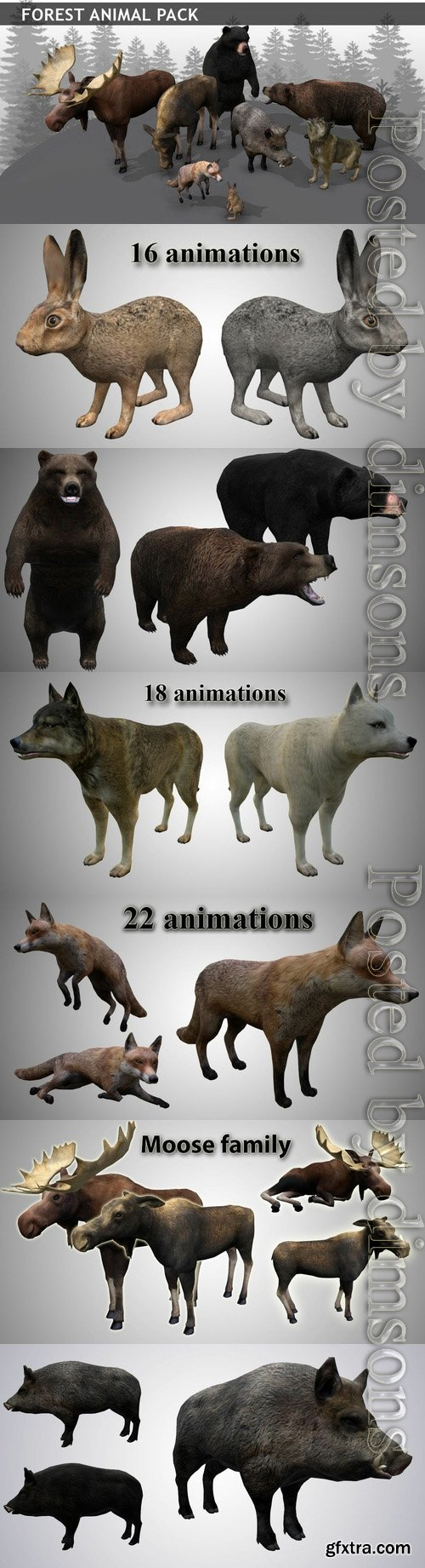 Cgtrader - Forest animals pack Low-poly 3D model
