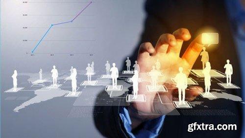 Networking Genius:Online Business Networking Strategies