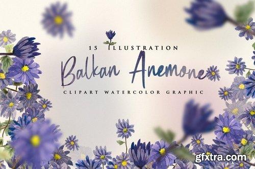 15 Watercolor Balkan Anemone Flower Illustration