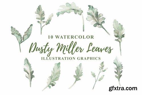 10 Watercolor Dusty Miller Leaves Illustration