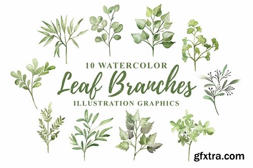 10 Watercolor Leaf Branches Illustration Graphics