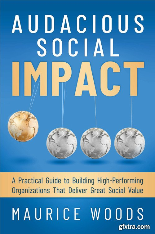 Audacious Social Impact: A Practical Guide to Building High-Performing Organizations That Deliver Great Social Value
