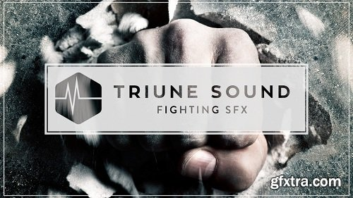 Triune Sound - Fighting SFX