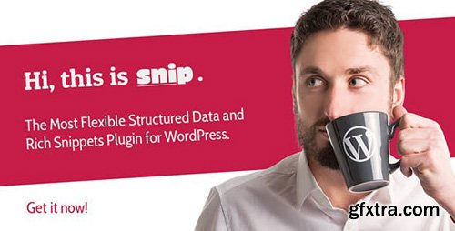 CodeCanyon - SNIP v2.10.0 - Structured Data Plugin for WordPress - 3464341 - NULLED