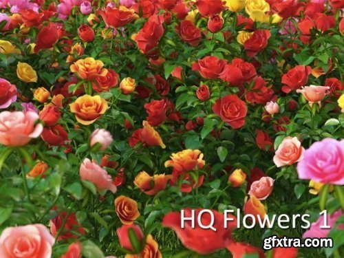 VrayC4D - HD Flowers vol.1 for Cinema4D