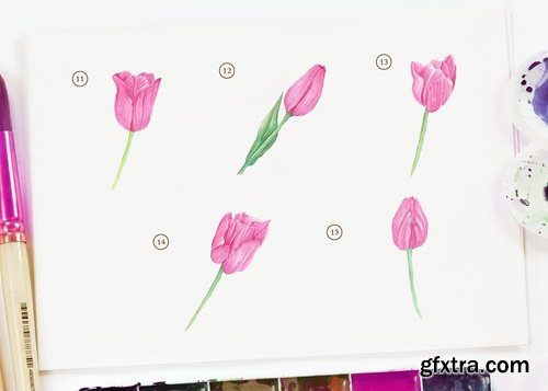 15 Watercolor Pink Tulip Flower Illustration