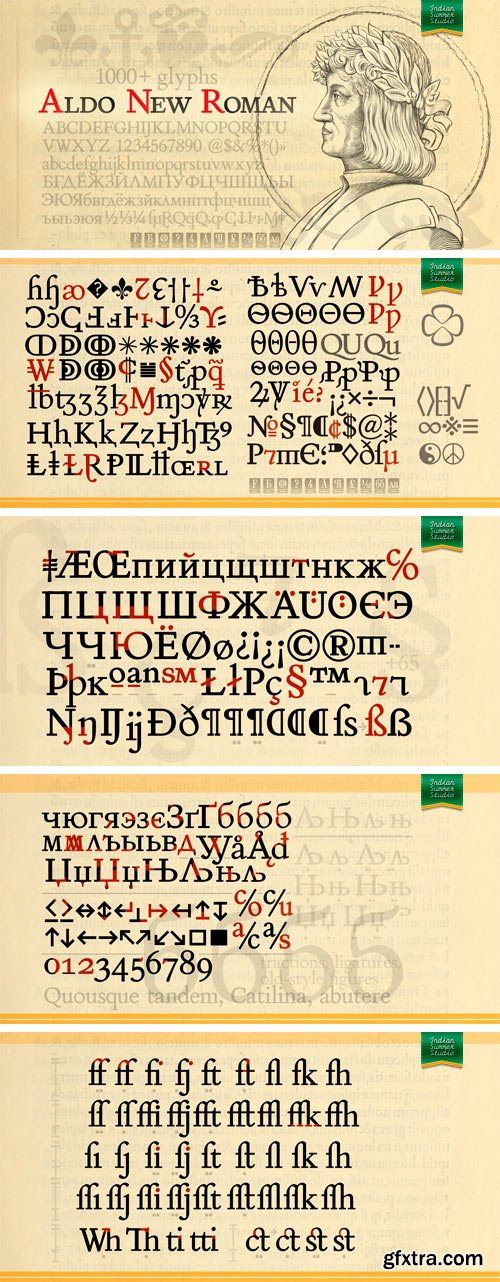 Aldo New Roman Font