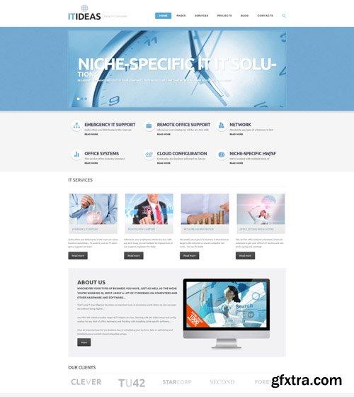 IT Consulting v1.0.0 - WordPress Theme - TM 46787
