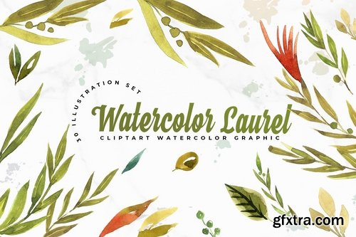 30 Watercolor Leaft Set Illustration