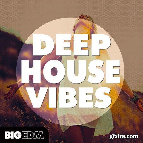 Big EDM Deep House Vibes WAV Sylenth1 Spire and Serum Presets
