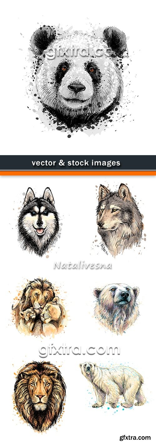 Africa wild animals color illustration of drawing