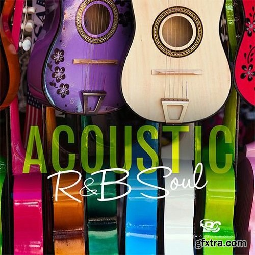 Big Citi Loops Acoustic RnB Soul WAV