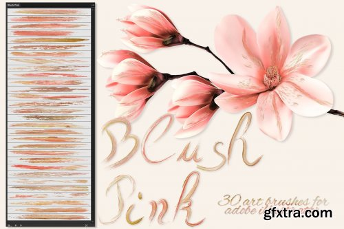 CreativeMarket - Blush Pink Brushes for Illustrator 3595049