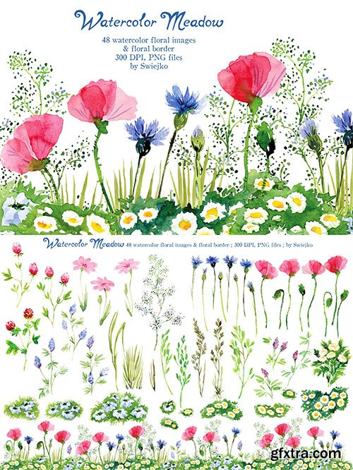 Hand Painted Watercolor Meadow Flowers
