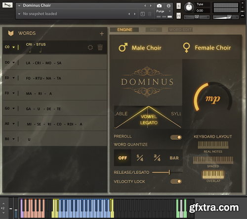 Fluffy Audio Dominus Choir KONTAKT-AwZ