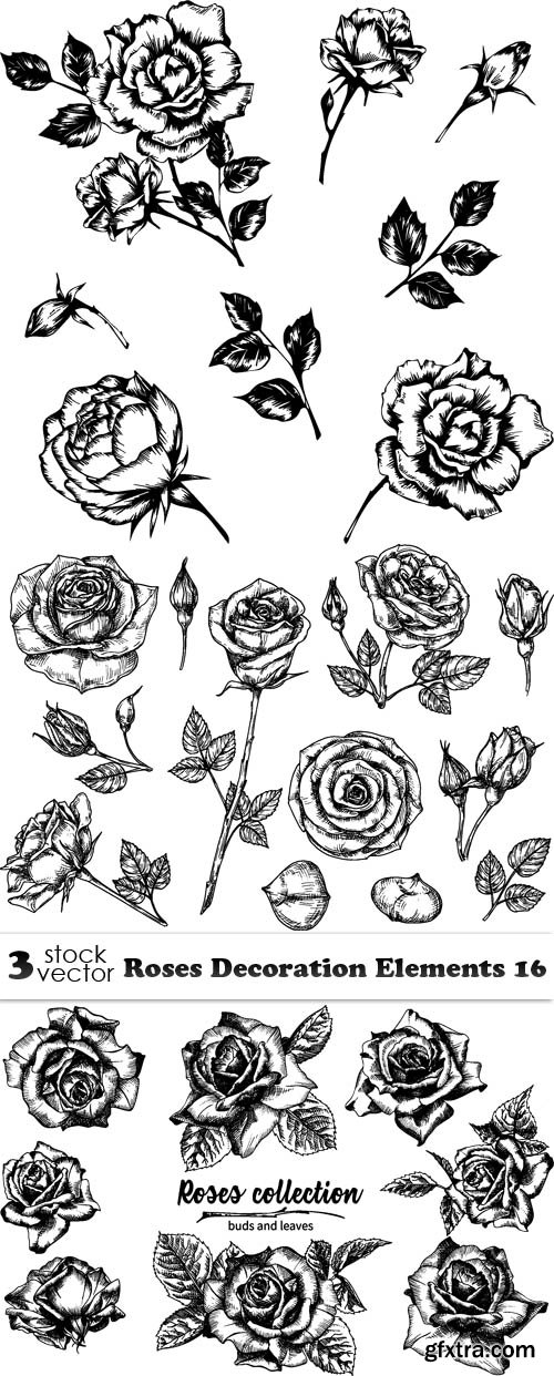 Vectors - Roses Decoration Elements 16