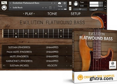 Orange Tree Samples Evolution Flatwound Bass KONTAKT-AwZ