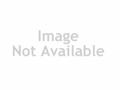 Ford 1934 3 window coupe Hot Rod 3D Model