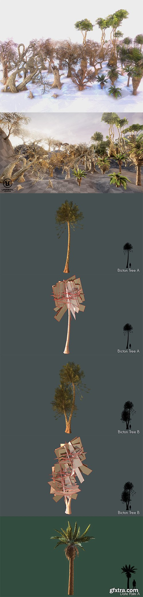 Cgtrader - Low Poly Tree Pack Low-poly 3D model
