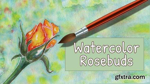 Watercolor Rosebuds