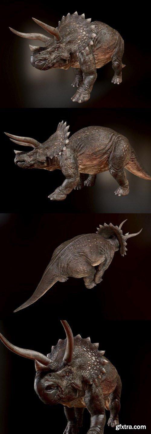 Triceratops – Dinosaur 3D Model