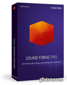 MAGIX SOUND FORGE Pro 13.0.0.131