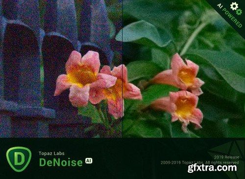 Topaz DeNoise AI 1.0.3 (x64)