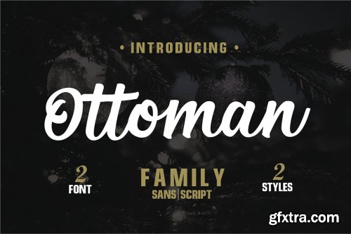 CreativeMarket - Font Pack Edition 1 3685493