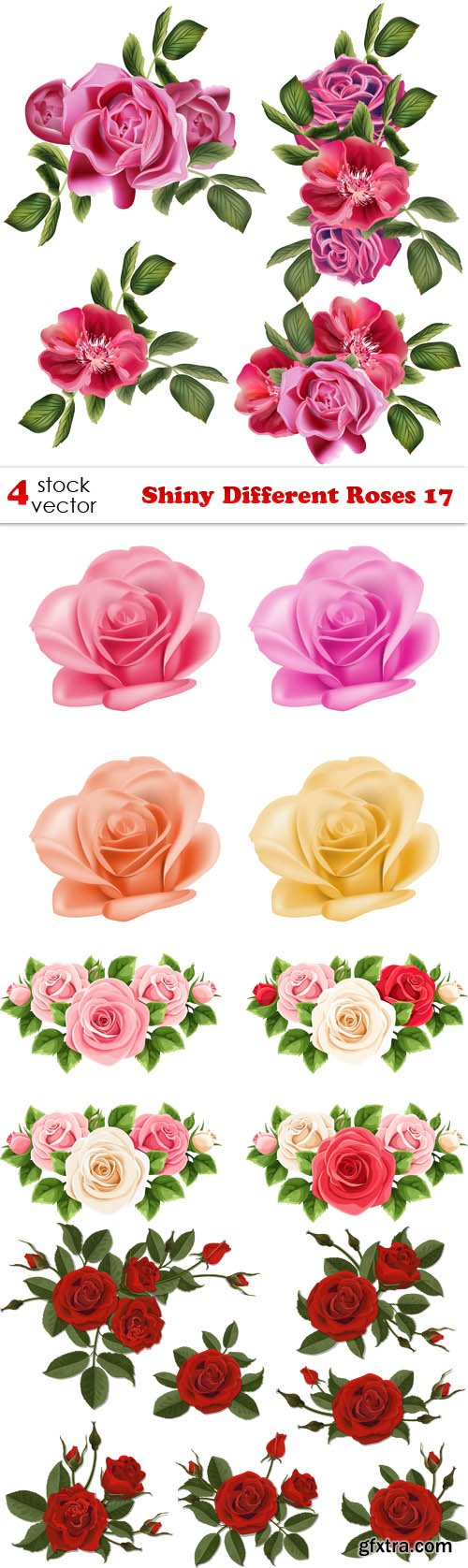 Vectors - Shiny Different Roses 17