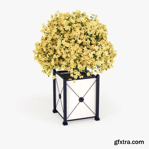 Cgtrader - Hibiscus Yellow 3D model