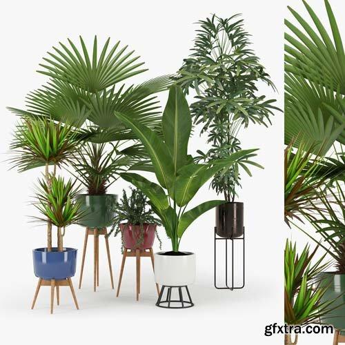 Cgtrader - Plants Set 3D model