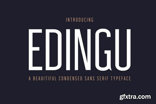 CM - Edingu Sans Serif Font Family 3758964