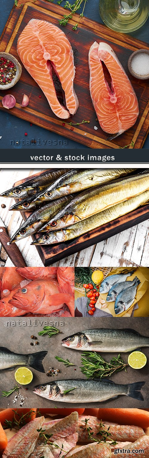 Fish useful product smoked fresh and dried