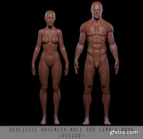 Cgtrader - Realistic Basemesh Male and Female Body - Rigged Low-poly 3D model