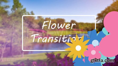 Flower Transitions Pack 222616